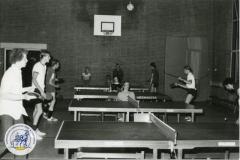 HDV_1978 (31)
