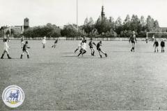 HDV_1978 (38)