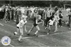 HDV_1978 (39)