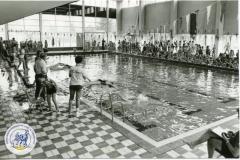 HDV_1978 (40)