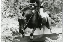 HDV_1978 (6)