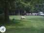Hondendemonstratie