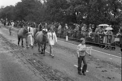 Paarden-Pony's defilé (14)