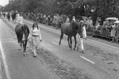 Paarden-Pony's defilé (9)