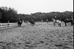 Paardensport (1)