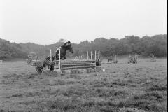 Paardensport (11)