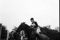 Paardensport (2)