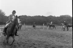 Paardensport (20)