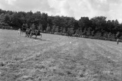 Paardensport (41)