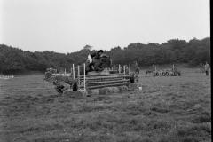 Paardensport (7)