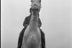 Ponywedstrijden_1971 (1)