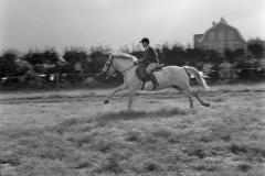 Ponywedstrijden_1971 (10)