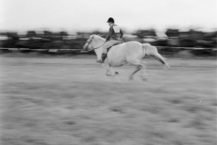 Ponywedstrijden_1971 (12)