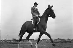 Ponywedstrijden_1971 (2)