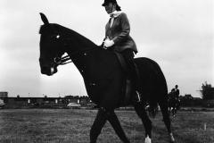 Ponywedstrijden_1971 (5)