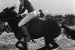 Ponywedstrijden_1971 (6)