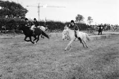 Ponywedstrijden_1971 (8)