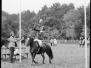 Rinsteken ponys-hackneyshow-ponyrennen