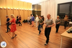 Salsa workshop (23)
