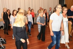Salsa workshop 2017 (3)