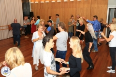 Salsa workshop 2017 (34)