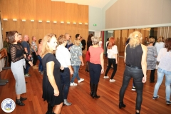 Salsa workshop 2017 (6)