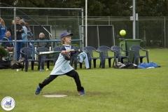 Softbal (8)