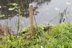 Viswedstrijd (8)
