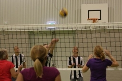 Volleybal (36)