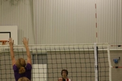 Volleybal (37)