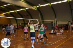 Volleybal (5)