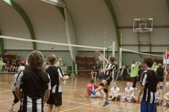 volleybal__26_