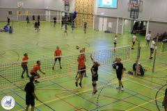 Volleybal-43