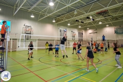 Volleybal (23)