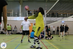 Volleybal 2017 (19)