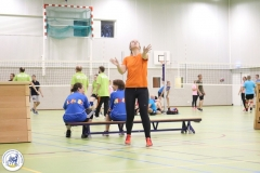 Volleybal 2017 (8)
