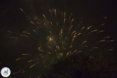 Vuurwerk (41)
