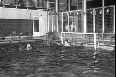 Zwemmen (18)