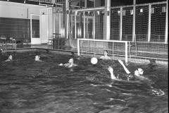 Zwemmen (20)