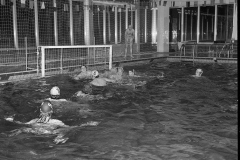 Zwemmen (22)