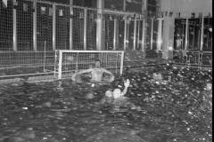 Zwemmen (23)