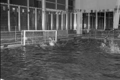 Zwemmen (24)