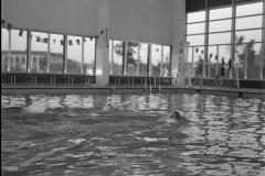 Zwemmen (36)