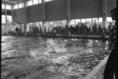 Zwemmen (1)