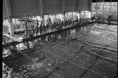 Zwemmen (6)